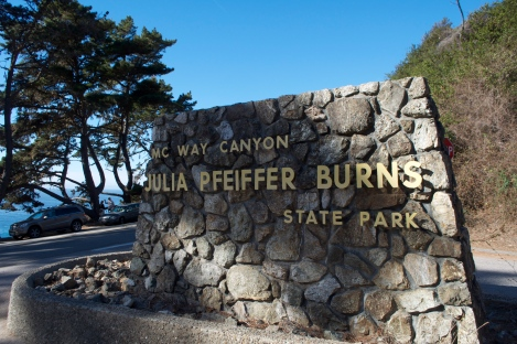Julia Pfeiffer Burns state park, big sur california